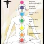 Guide to 7 Chakras or Energy Centers